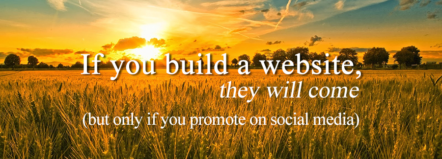If You Build a Website They Will Come